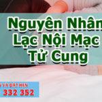 Lạc nội mạc tử cung có nguy hiểm không?   Phòng khám đa khoa Cần Thơ